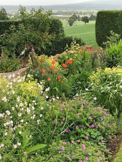 Garden open 4