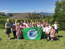 Green Flag with Nevis